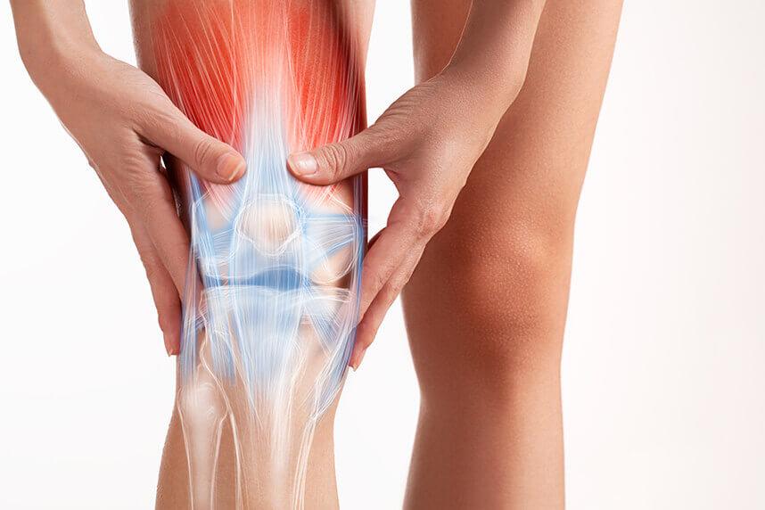 i.php?p=26. Recuperarea leziunilor muscu